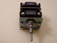 Thorn Potentiometer 100 Ohm mit Doppelachse